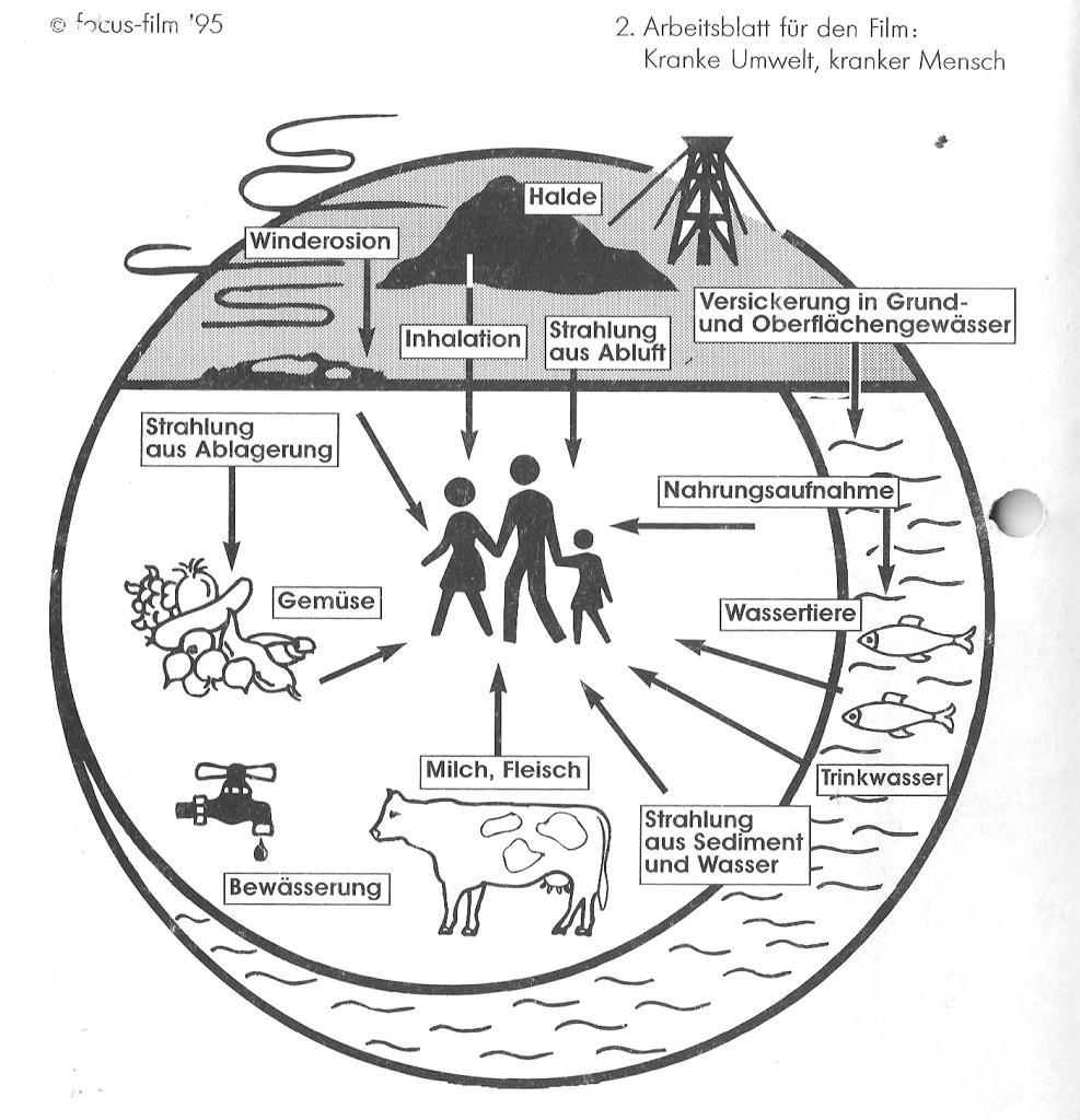 2. arbeitsblatt für den film kranke umwelt kranker mensch